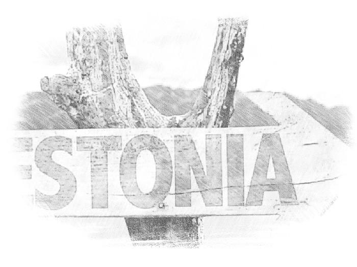 Как купить бизнес в Эстонии