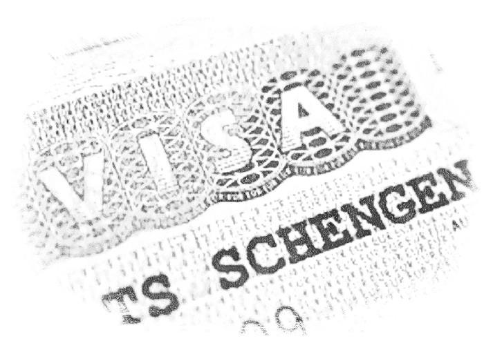 Заранее оформите визу категории D в консульстве