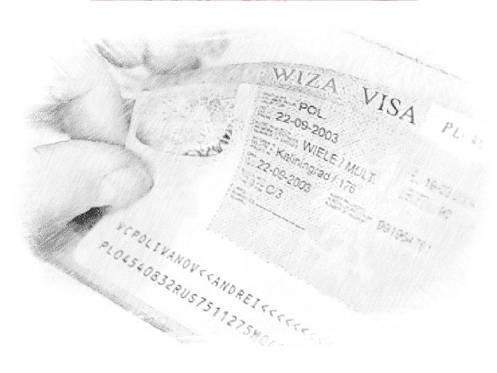 Внешний вид визы в Испанию