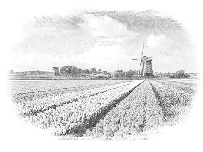 Поездка в Голландию: получение визы