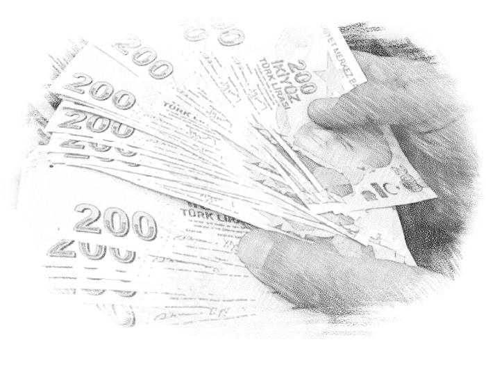 Турецкие деньги в руках