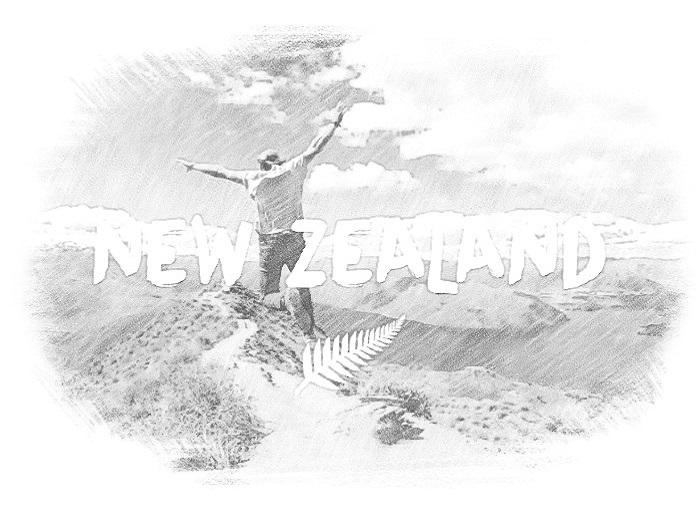 Калькулятор баллов эмигранта в Новую Зеландию поможет узнать свои шансы на получение разрешения на работу и ПМЖ