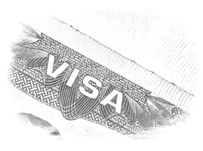 В США можно выехать по проекту бизнес иммиграции тремя способами: открытие виз EB5, L1, E2