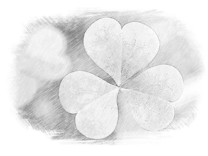 Ирландцы отличаются оптимистичностью и радушностью